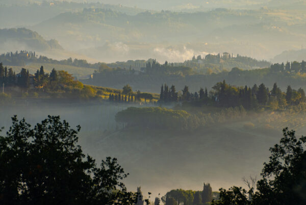 Hügel der Toskana mit Gebäuden und Säulenzypressen - Toskana Wandbild