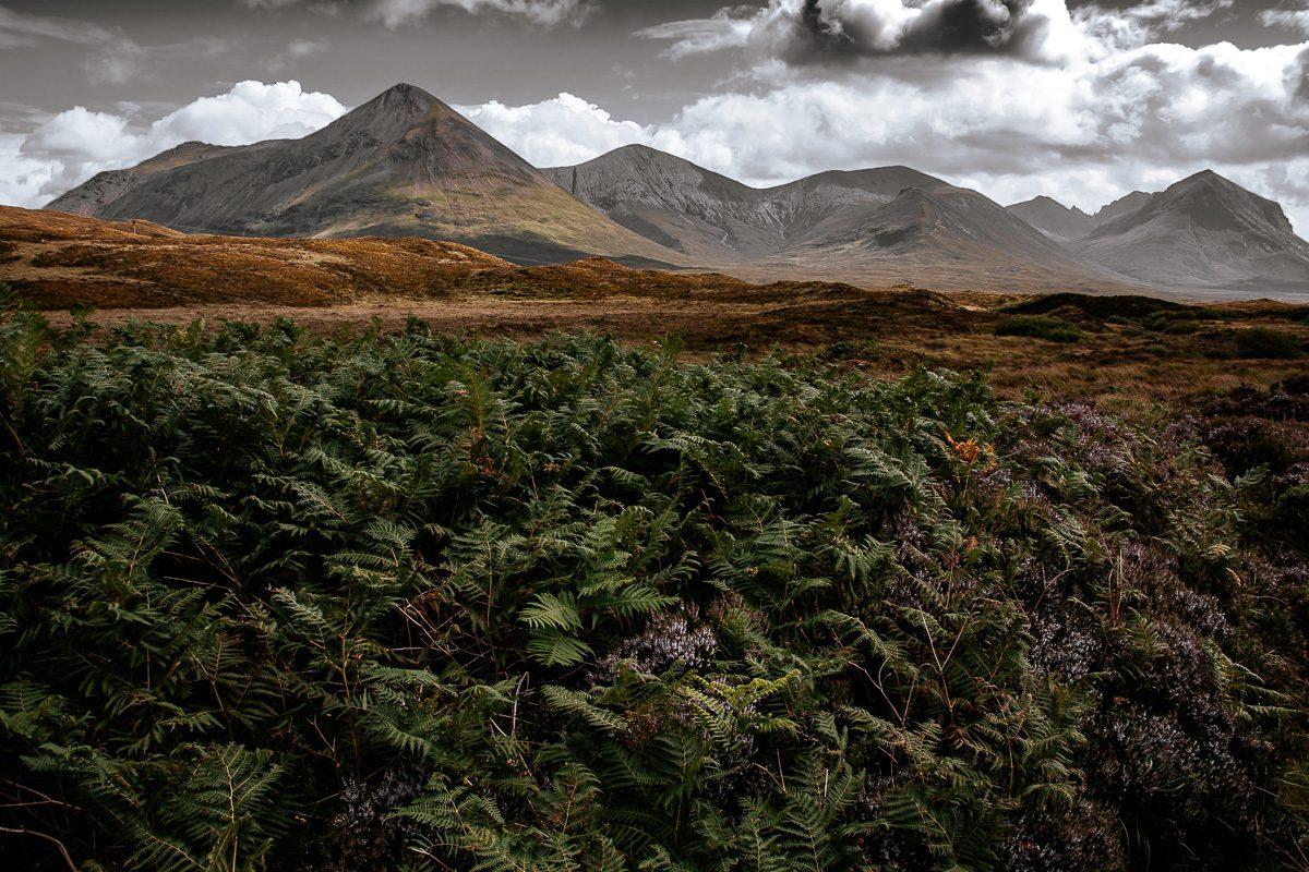 Schottlands Hochebene mit karger Vegetation - Schottland Bilder