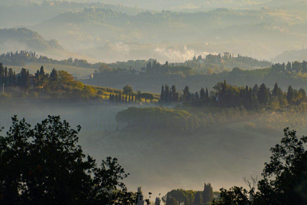 Toskana - Säulenzypressen im Nebel - Wandbild